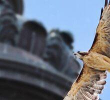 Hawk in Flight Sticker