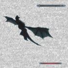 Skyrim - Dragon flying. by Anarchysmaster