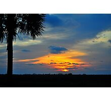 Sunset with a Palm Tree Photographic Print