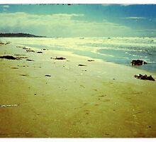 Vintage Mission Beach Framed by TiNYPHOTOS