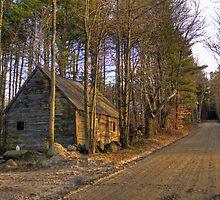 Along Stowe Mountain Road by Monica M. Scanlan