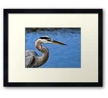 Say It, Don't Spray It Framed Print