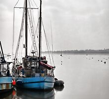 Misty Morning 2 ~ Topsham, Devon by Susie Peek