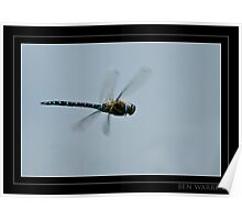 Dragonfly inflight Poster