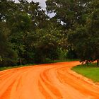 Dirt Road by joevoz