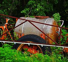 Old Sprayer  by joevoz