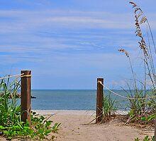 Beach Entry by joevoz