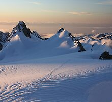 Twilight over Fox Glacier, South Island, New Zealand by opensea