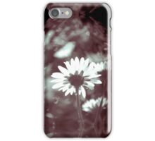 Vintage Daisy iPhone Case/Skin