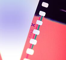 Filmstrip by Claire Elford