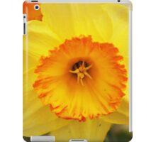 Daffodil flower iPad Case/Skin