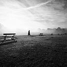 November Fog by Trish  Anderson
