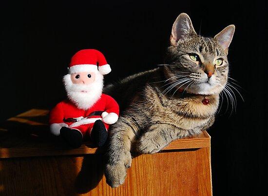 Hanging With Santa by jodi payne