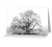 White Tree Greeting Card
