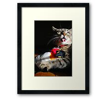 I Thought Penguins Did Not Have Feathers!! Framed Print