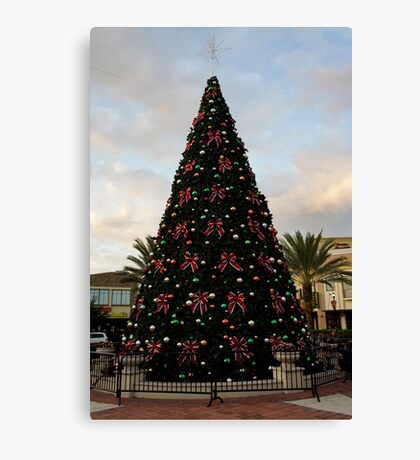 A Florida Tree Canvas Print