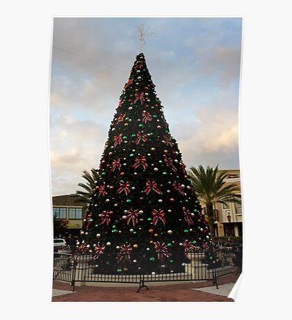 A Florida Tree Poster