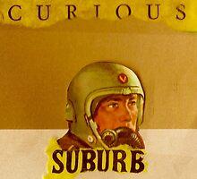 curious suburb by steve2727