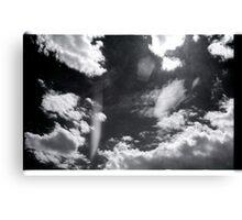 00295 Canvas Print