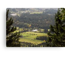 Dean Park pasture land Canvas Print