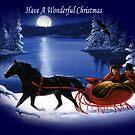 Moonlight Ride - Have A Wonderful Christmas by EnchantedDreams