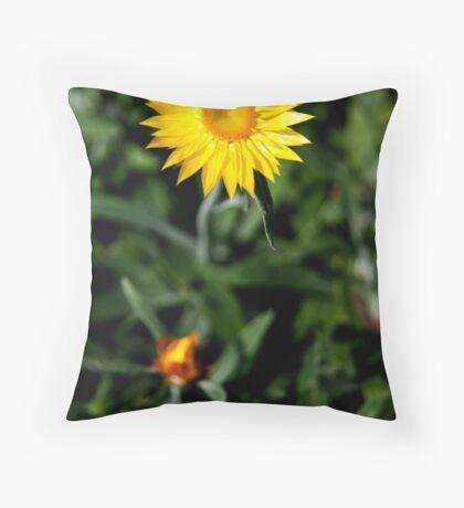 Nature Series 4 Throw Pillow