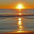 Salvo Sunrise by Robin Lee