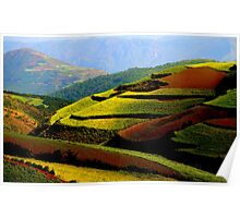 Red Earth of Dongchuan Poster