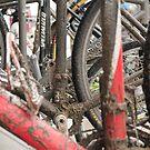 Cyclocross Bikes by Joy Fitzhorn