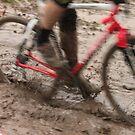 The Mud Pit by Joy Fitzhorn