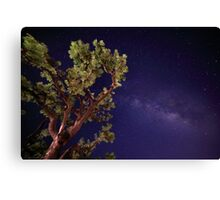 The Milky Way Against a Lone Tree Canvas Print