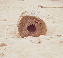 drift wood by karlbrobicsek