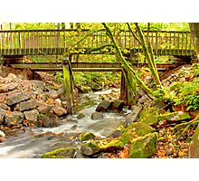 Mossy Old Bridge Photographic Print