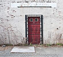 The red door by KaylieAnnPhotog