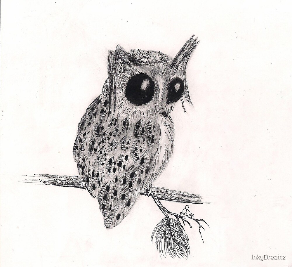 Thoughtful Owl by InkyDreamz