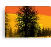 Silhouette trees at sunset Canvas Print
