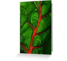 #11        Swiss Chard Leaf Greeting Card
