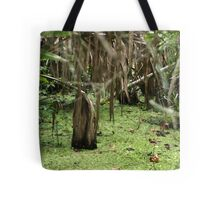 Cypress Stump Tote Bag