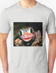 Spade-footed Gecko Unisex T-Shirt