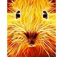 Fiery Mouse Photographic Print