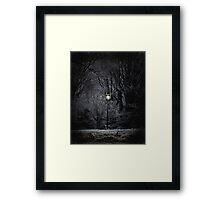 Reality of Narnia Framed Print