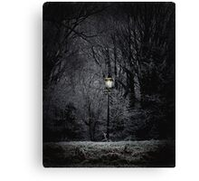 Reality of Narnia Canvas Print