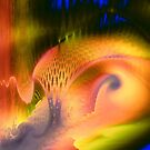 Rainbow Forest by Bunny Clarke