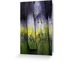 Wood from History Greeting Card