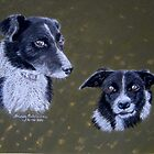 Border Collies by Hilary Robinson