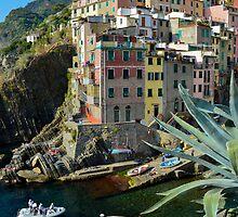 Riomaggiore - Cinque Terre by davefozz