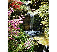 A Splash Of Colour and Water Photographic Print