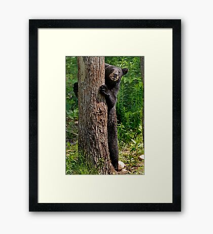 9..10... Ready or not here I come Framed Print