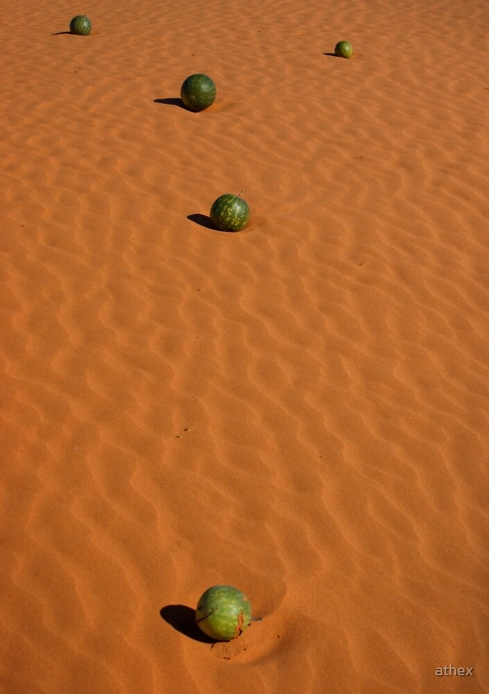 Dune Bocce by athex
