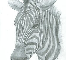 Zebra by Jessica Scott